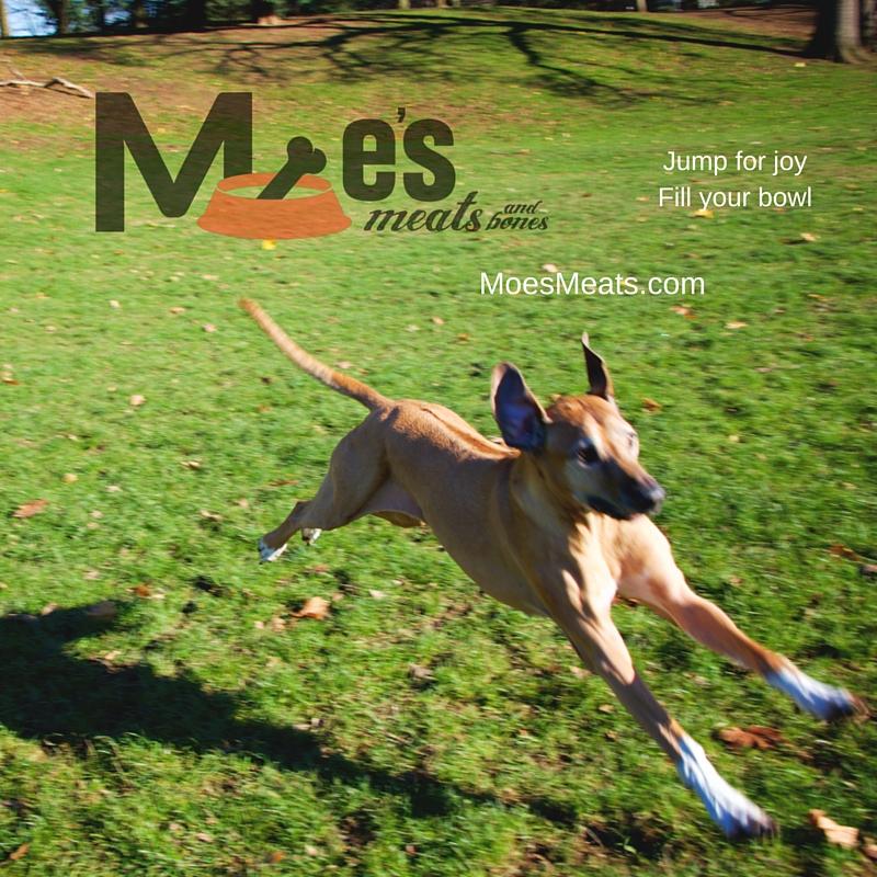 Moe's Meats and Bones: www.MoesMeats.com