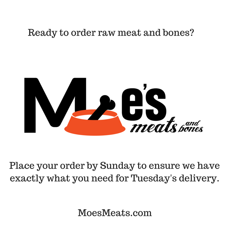 Ready to order raw meat and bones?