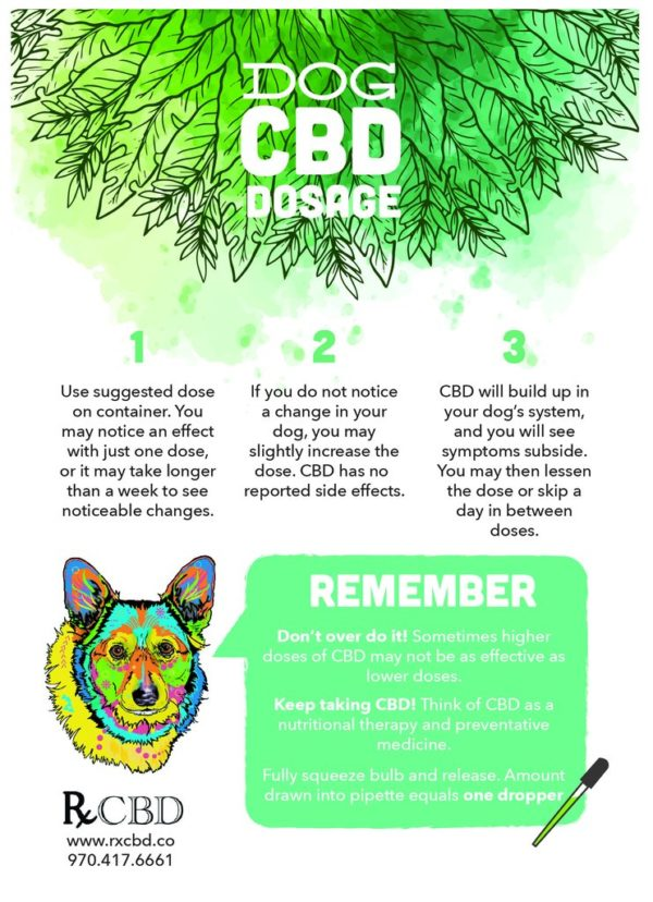 RxCBD, The Aegis Bargain Bundle of CBD Extract and CBD Treats for Small - Medium Dogs